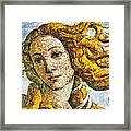 Fruity Venus I Am So Sorry Mr Boticelli Framed Print