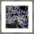 Funky Flowers Framed Print