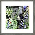Garden Birdhouse Framed Print