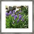 Garden Elegance Framed Print
