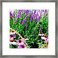 Garden Glory Framed Print