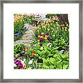 Gardens Of Tulips Framed Print