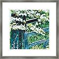 Gate And Blossom Framed Print