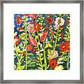 Gladiolus, 11x14, Oil, '07 Framed Print