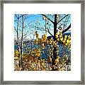 Glimpse Of Kalamalka Lake Framed Print