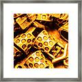 Gold Treasures Framed Print