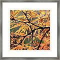 Golden Branch Framed Print