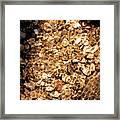 Golden Gravel Framed Print