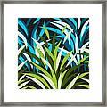 Grasslands Framed Print