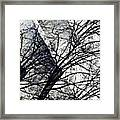 Gray Repetitions Framed Print