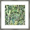 Green Bamboo Tree Framed Print