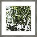 Green Fantasy Framed Print