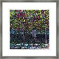 Hanging Grapevines Framed Print