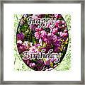 Happy Birthday - Greeting Card - Almond Blossoms No. 2 Framed Print