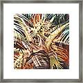 Hawaiian Fireworks Framed Print