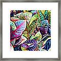 Hawaiian Morning Framed Print