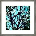 Her Perfect Tree Framed Print