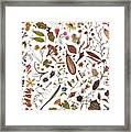Herbarium Specimen Framed Print