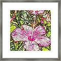 Hibiscus 101516 1a Framed Print