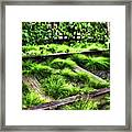High Line Nyc Railroad Tracks Framed Print