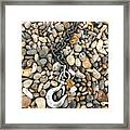 Hook, Chain And Pebbles Framed Print