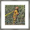 Hose Advance Framed Print