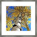 How High Is It Framed Print