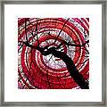 Hypnotic Nature Framed Print