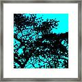 I Think That I Shall Never See A Poem Lovely As A Tree Framed Print