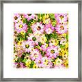 Impressionist Floral Ix Framed Print