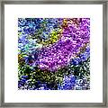 Impressions From The Garden Framed Print