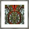Indian Good Luck Framed Print