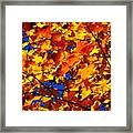 Indian Summer ... Framed Print