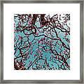 Infrared Frangipani Tree Framed Print