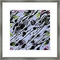 Insects Loathing - V1lle30 Framed Print