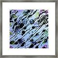 Insects Loathing - V1lllt54 Framed Print
