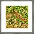 Invisible Nature One Surreal C Framed Print