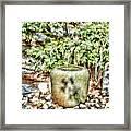 Japanese Garden 7 Framed Print