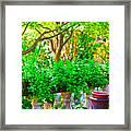 Joe T Garcias Gardens Framed Print