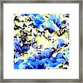 Jolly Winter Blues Framed Print