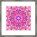 Kaleido Red Rubi 8 Framed Print