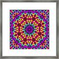 Kaleidoscope 4 Framed Print