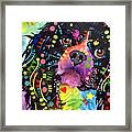King Charles Spaniel Framed Print by Dean Russo