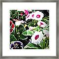 Kingwood Center 3 Framed Print