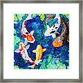Koi Family Framed Print