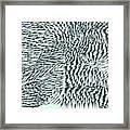 L9-34-216-255-251-220-255-232-4x2-2000x1000 Framed Print