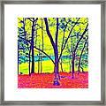 Lake Eyed Framed Print