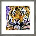 Landscape Tiger Framed Print