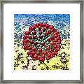Lassa Virus Framed Print by Russell Kightley