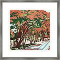 Lawson Avenue Flamboyants Framed Print